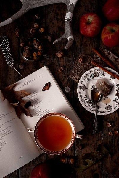 belle illustration avec le thé 14