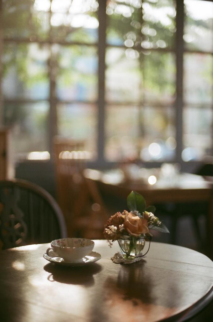 image avec du thé numéro23