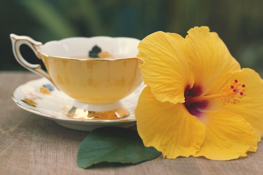image de thé pour voyager 05