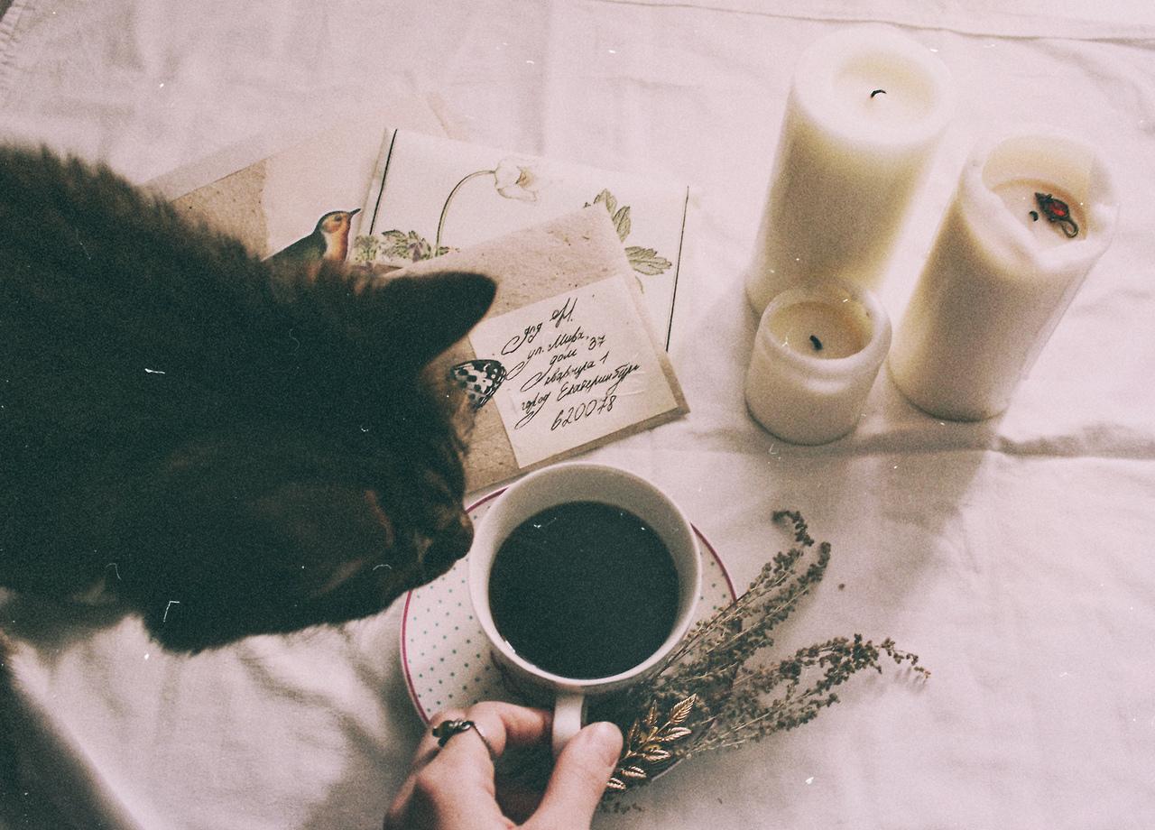 image de thé vue sur tumblr 2