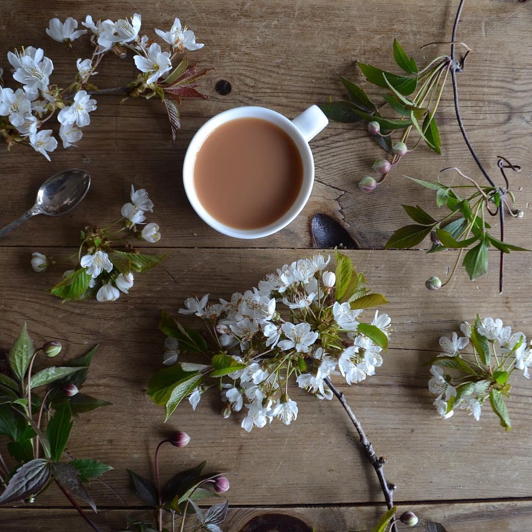 le café c'est pas ma tasse de thé 11
