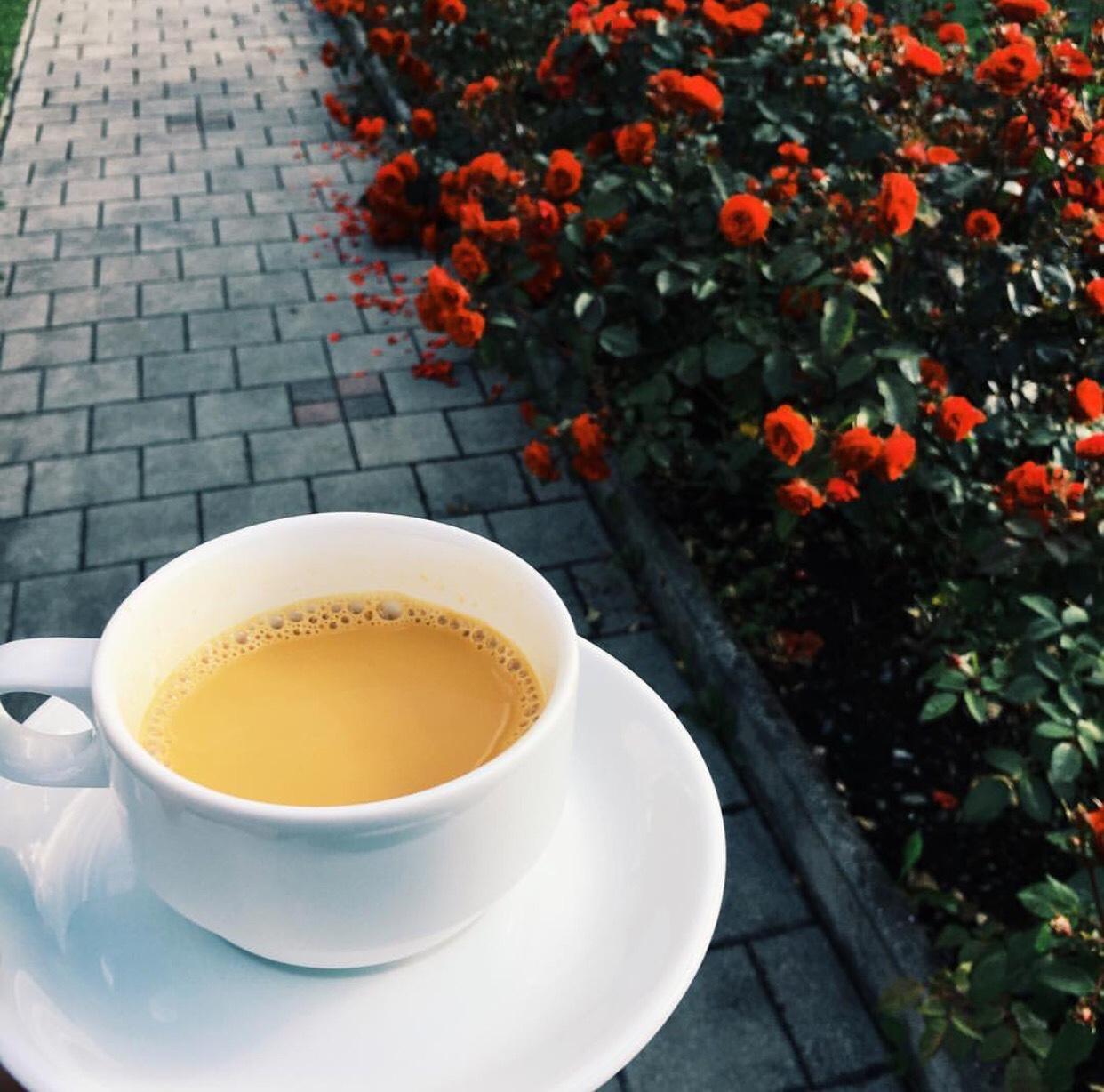 le plaisir du thé en image 37