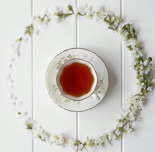 le thé c'est un vrai calin 14 et pas seulement en photo
