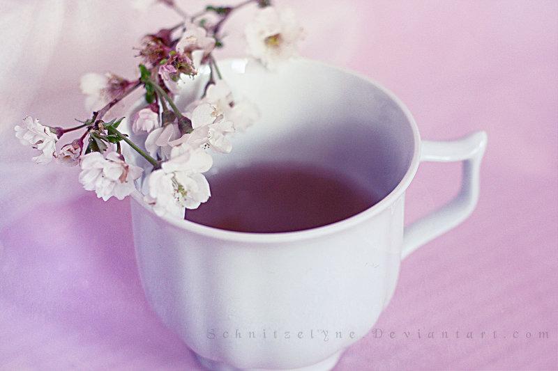 photo qui donne envie de boire du thé 02