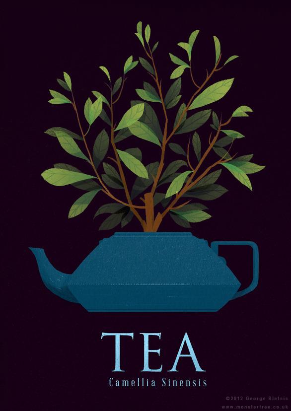 image de thé pour la journée numéro 77