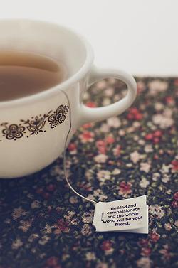 thé vert maigrir lequel choisir